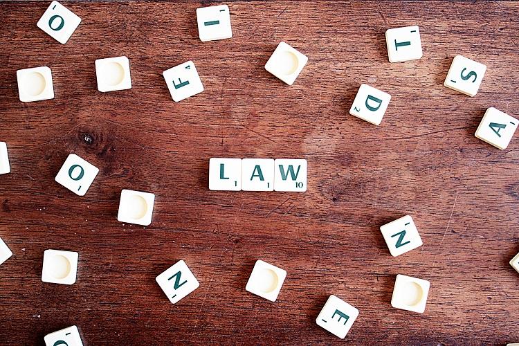Law School - A Survivors Guide